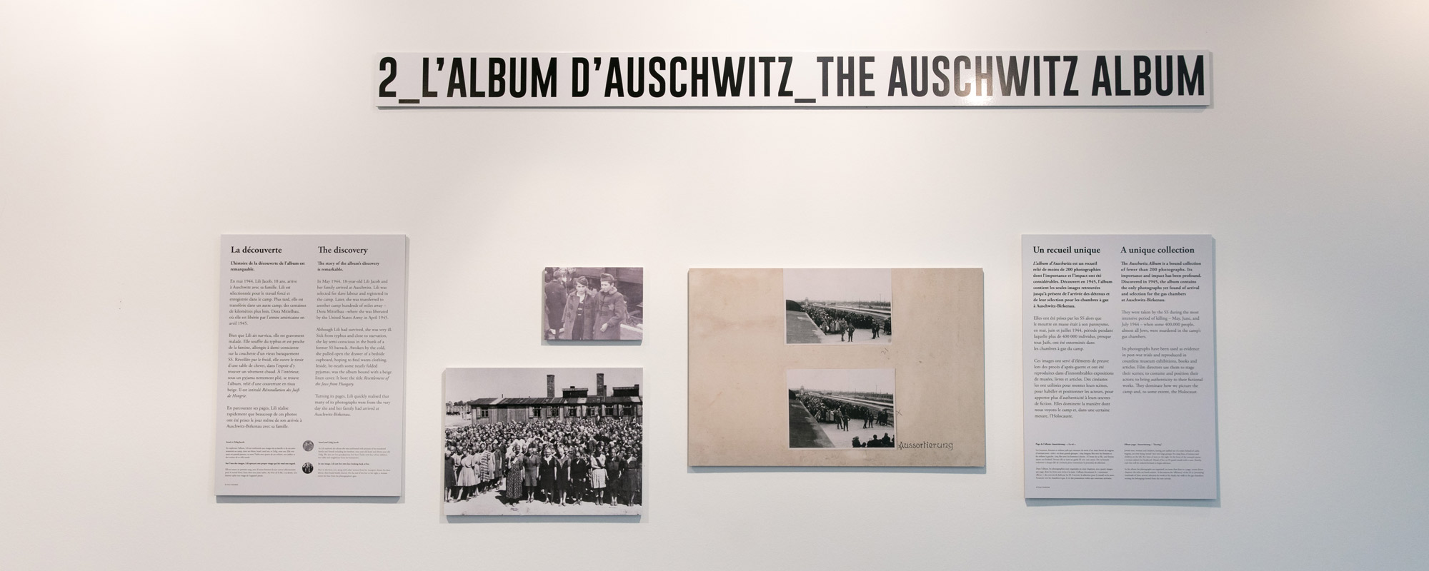 SeeingAuschwitz_02.jpg